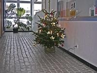 Weihnachtsbaum in der Verwaltung der KAS
