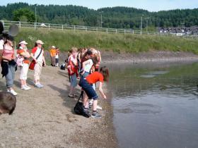 Einige aus der Klasse 6.2 warfen Steine ins Wasser.