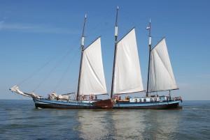 segel-2011-28